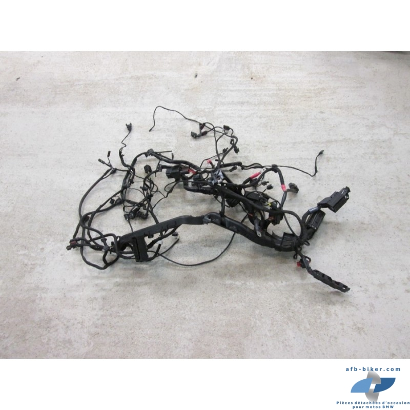 Faisceau électrique de BMW R1200RS et R1200R  LC