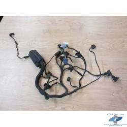 Faisceau de câblage moteur de BMW f800st et s (jusqu'au...