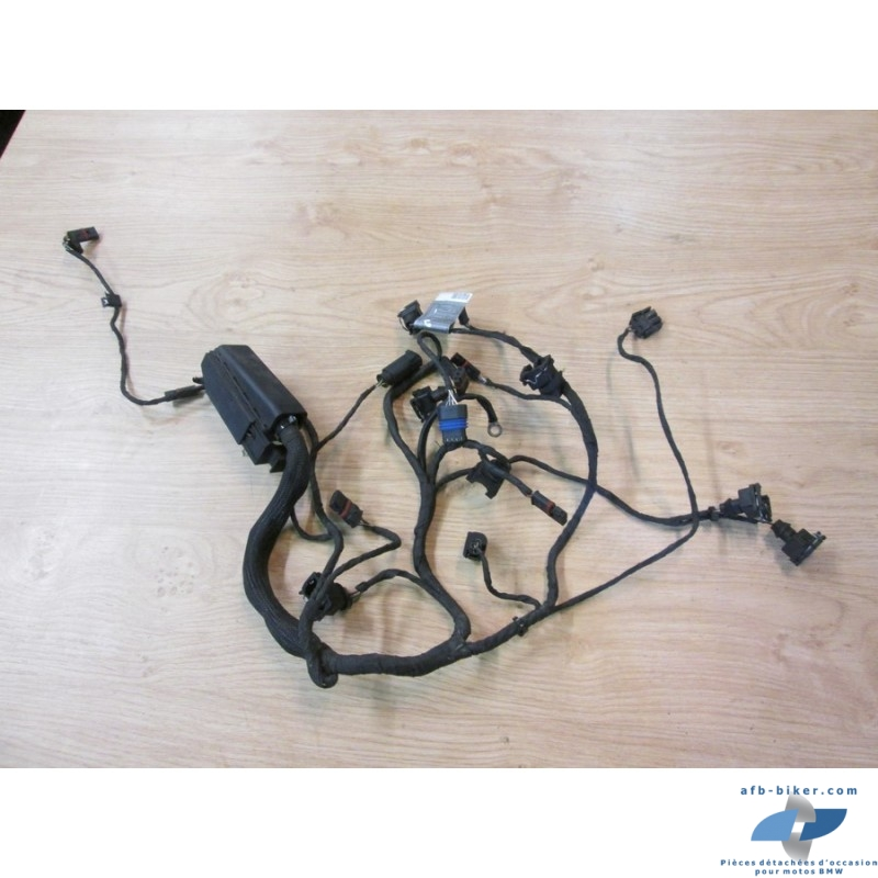Faisceau de câblage moteur de BMW f 800 st / s (jusqu'au 11/2007)